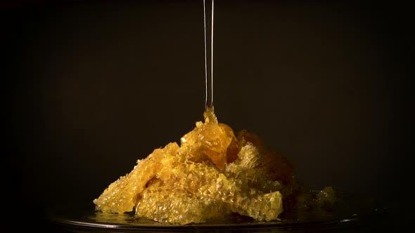 Honey Flowing on Honey Comb
