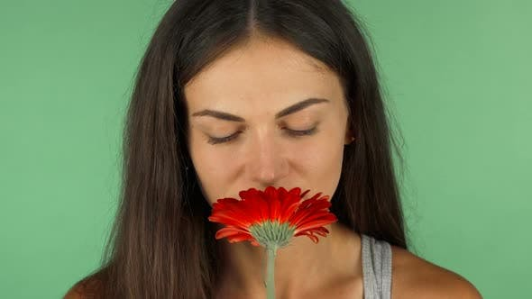Thumbnail for Young Beautiful Woman Smelling Red Flower on Chromakey Green Background