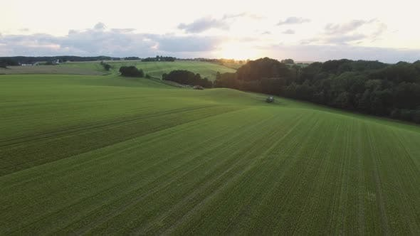 Cover Image for Lush Green Plantation Field Along the Hillside at Sunset