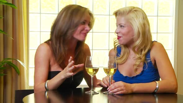 Thumbnail for Two women friends drinking wine