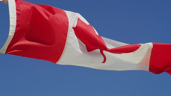Thumbnail for Canadian flag waving in the wind