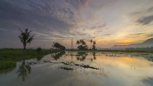 Timelapse reflection coconut of flood area