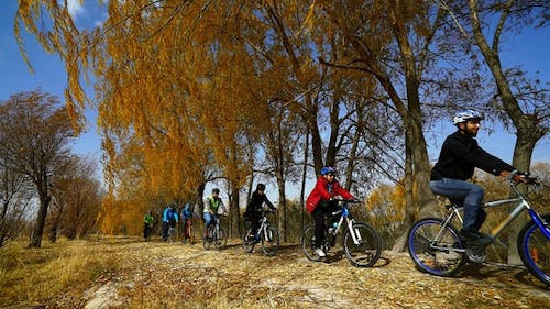 Cyclists In The Outdoors