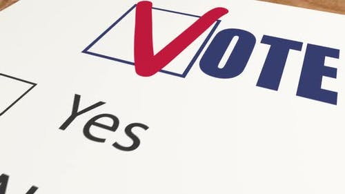 Ballot Voting with Two Choices - Vote Favor Or Vote Against