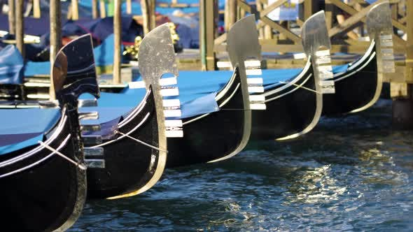 Thumbnail for Gondolas at Sunset Lights, Venice City in Italy, Canal Grande