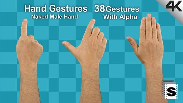 Thumbnail for Hand Gestures Male Naked Hand