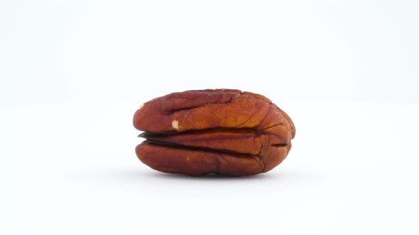 Thumbnail for One Blanched Pecan Nut. Rotating on the Turntable Isolated on the White Background