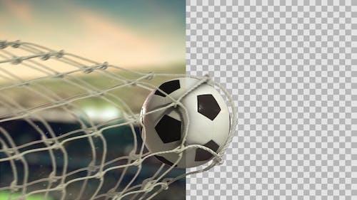 Soccer Ball Scoring Goal Day