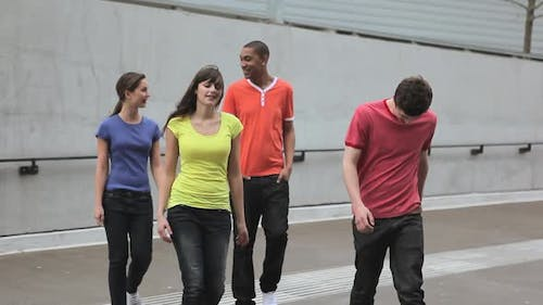 Group of young adult friends walking