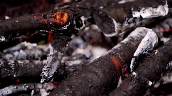 Burning wooden logs