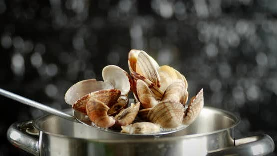 The Vongole Mussels Were Taken Out of the Pan.