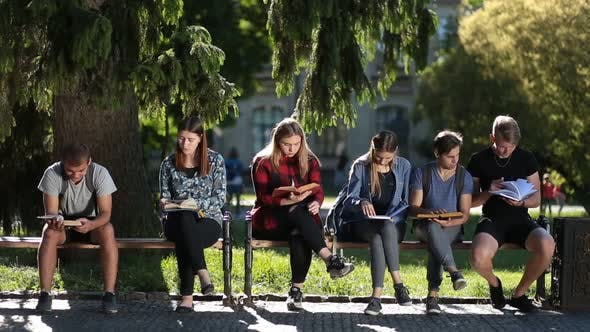 Thumbnail for Concentrated Classmates Learning Together Outdoors