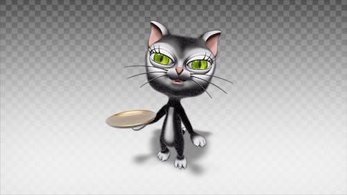Cartoon Kitty Cat - Show Dish