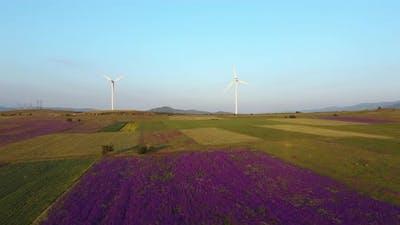 Wind Farm Aerial View