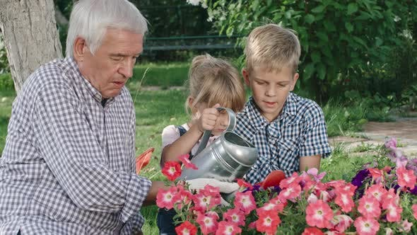 Thumbnail for Grandfather and Grandchildren Gardening Together