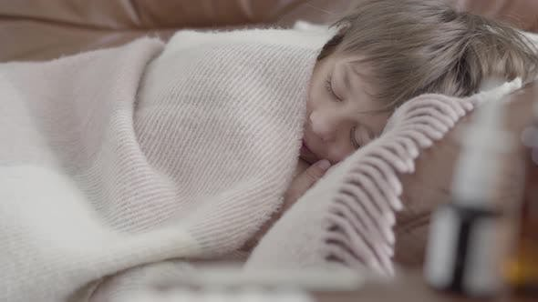 Thumbnail for Portrait Small Boy Lying on the Sofa Covered with a Blanket at Home. Cute Child Is Resting. The Boy