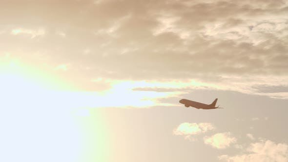 Thumbnail for Plane Flying in the Light of Bright Evening Sun