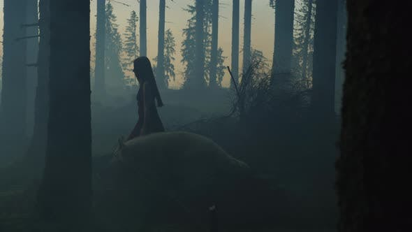 Thumbnail for Girl walking in the forest