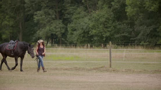 Thumbnail for Woman Riding Horse on Farm. Recreation - Woman Walking with Horse