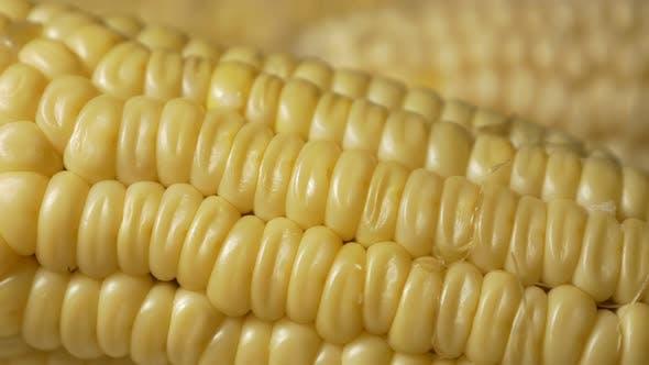 Thumbnail for Mais frisch gekochtes Gemüse 4K UHD Footage Schwenken - Frisch gekocht Maispfanne UHD 3840X2160 Video