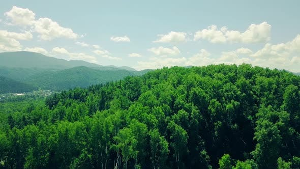 Aerial Flying Over Mountains and Forest Under Cloudy Sky