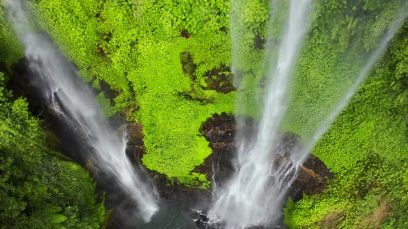 Thumbnail for Waterfall in the Rainforest - The Beauty of a Waterfall Among the Lush Green Leaves of a Rainforest