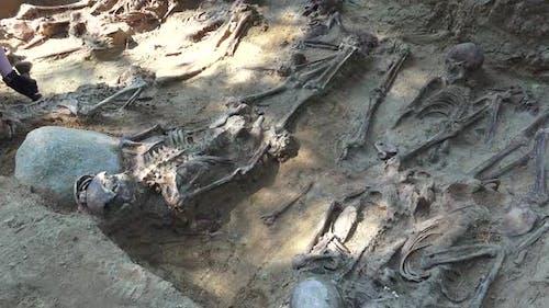 Massengrab oder archäologische Ausgrabungen 4