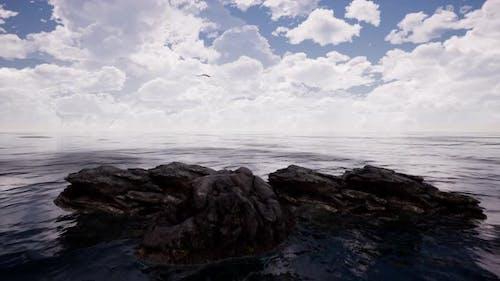 Falke fliegen über Klippen in Ozean