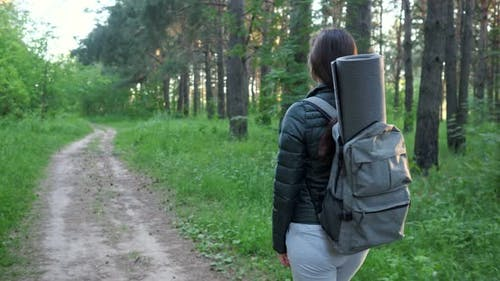 Young Woman with a Backpack Walks Along a Trail in a Pine Forest