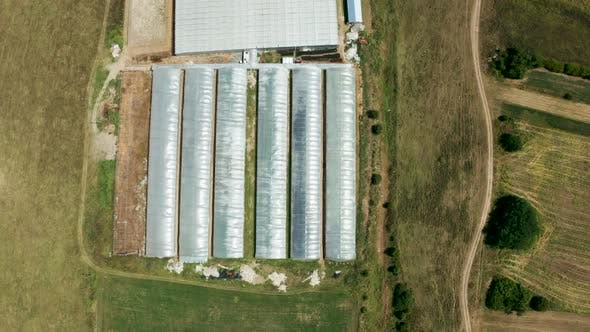Cover Image for Drone Flying Over a Industrial Greenhouse with Vegetables