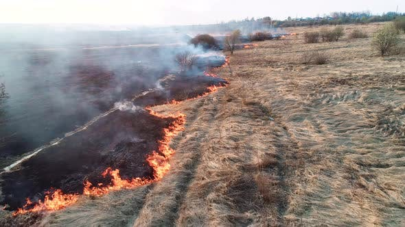 Thumbnail for Strong Fire in an Empty Field, Strong Smoke From a Burning Place. Flying Over a Fire at Low Altitude