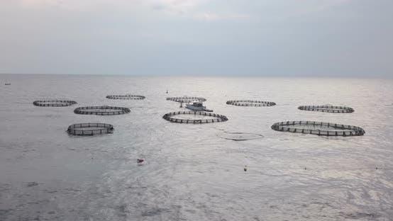 Aquaculture Aerial View