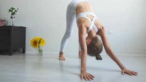 Young Woman Practicing Yoga Standing Isolated in Dawnward Facing Dog Pose.