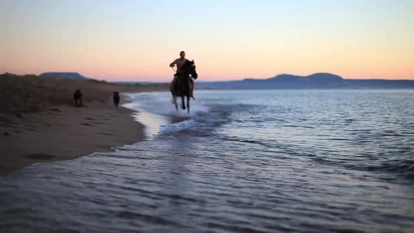 Thumbnail for Horse Riding On The Beach