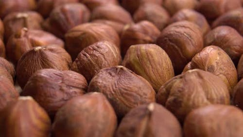 Appetizing hazelnuts. Macro