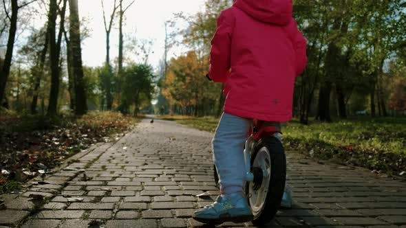 Thumbnail for The Child Quickly Rides a Bike Ride Through the Autumn Park. Slow Motion