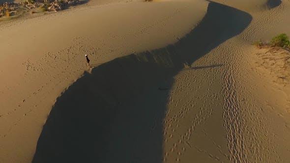 Thumbnail for Sand