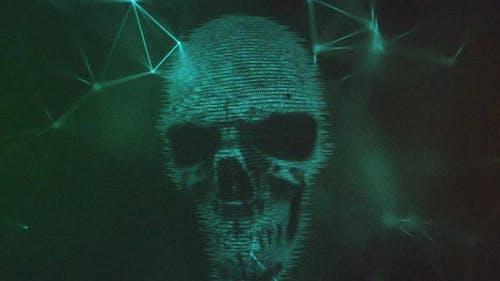 Crâne numérique