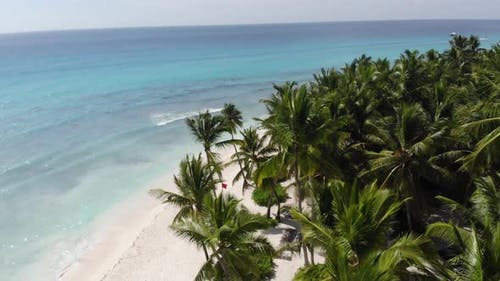 High Angle View on a Tropical Beach with People Enjoying the Nature