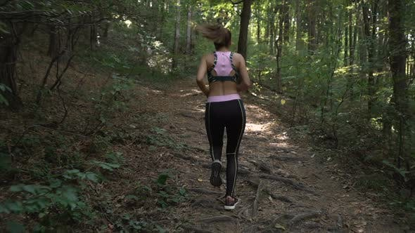Thumbnail for Fitness Brunette Girl with Ponytail and Sports Outfit Jogging in Summer Forest