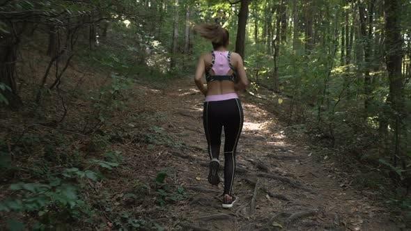Thumbnail for Fitness Brünette Mädchen mit Pferdeschwanz und Sport-Outfit Joggen im Sommerwald