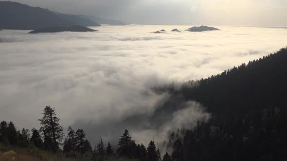 Thumbnail for Sea of Clouds in the Valley Surrounded by Forest at Morning