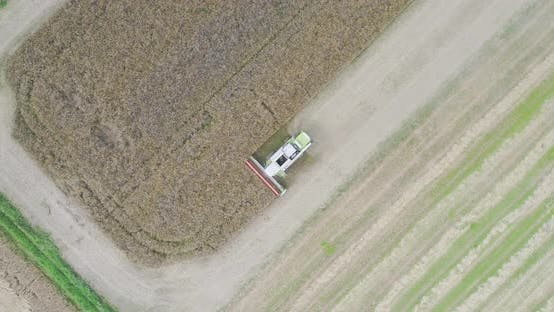 Thumbnail for Agriculture Harvester Harvesting Field Aerial View