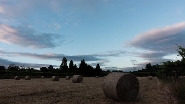 Thumbnail for Agriculture Field on Sunset