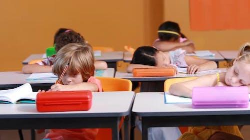 School kids studying in classroom