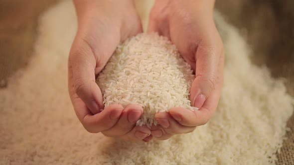 Cover Image for Handful of White Rice, Cereal Grain Grown in Asia, High Quality Food Product