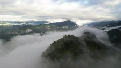 Misty Mountains and forest