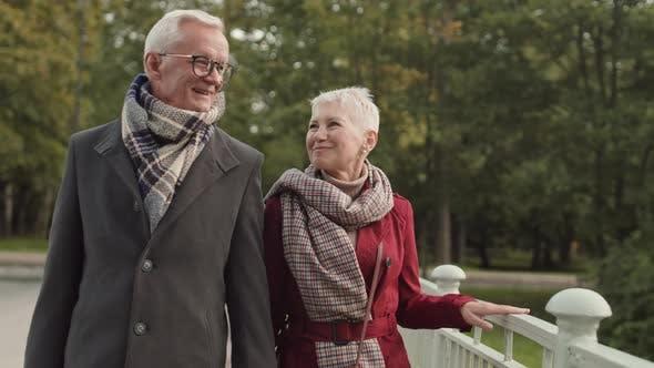 Großeltern gehen im Park