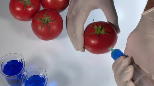 Thumbnail for Tomato Injection