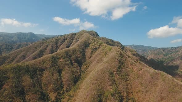 Thumbnail for View of Mountain Forest Landscape. Bali